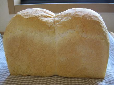 イギリス食パン2010.08.31