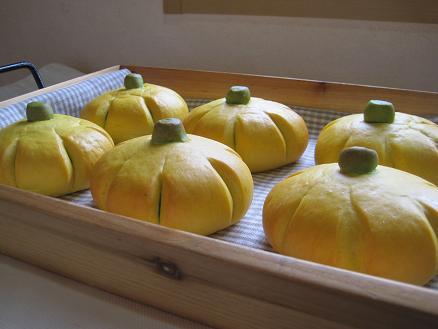 かぼちゃ断面2010.10.25