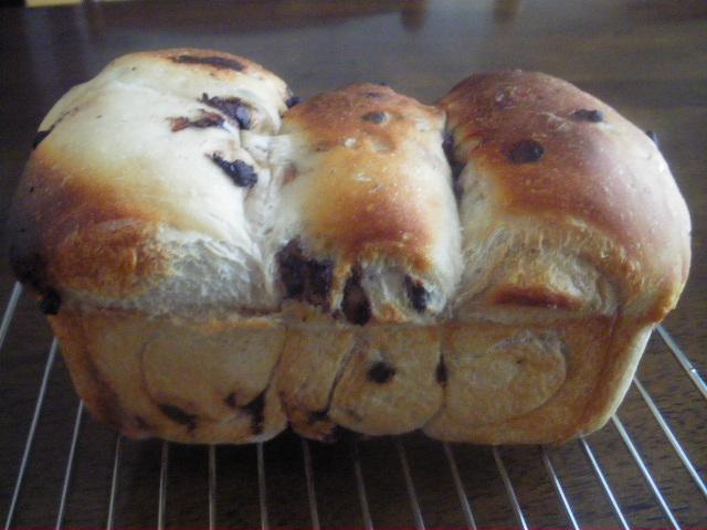 チョコチップの食パン
