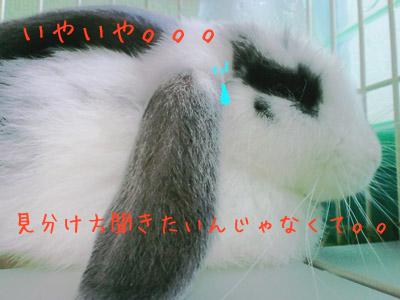 072703.jpg