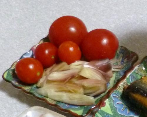130929トマト