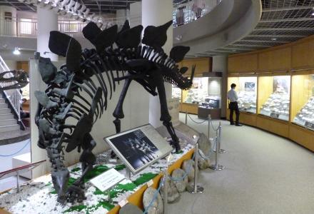 130926自然史標本館2
