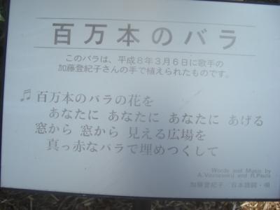 CIMG5920.jpg