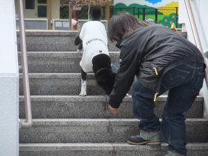 レオン階段