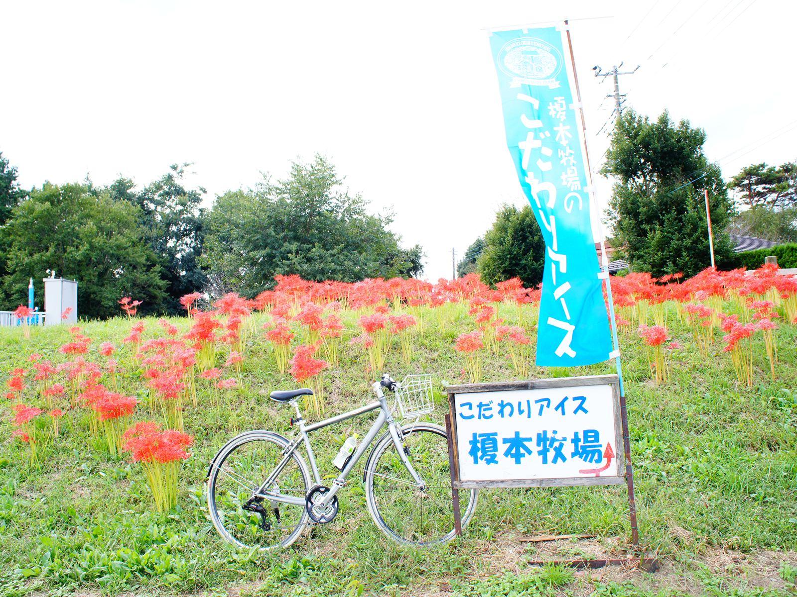 20111001_01