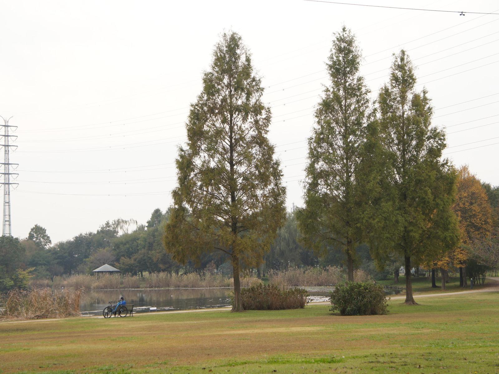 20111103_03
