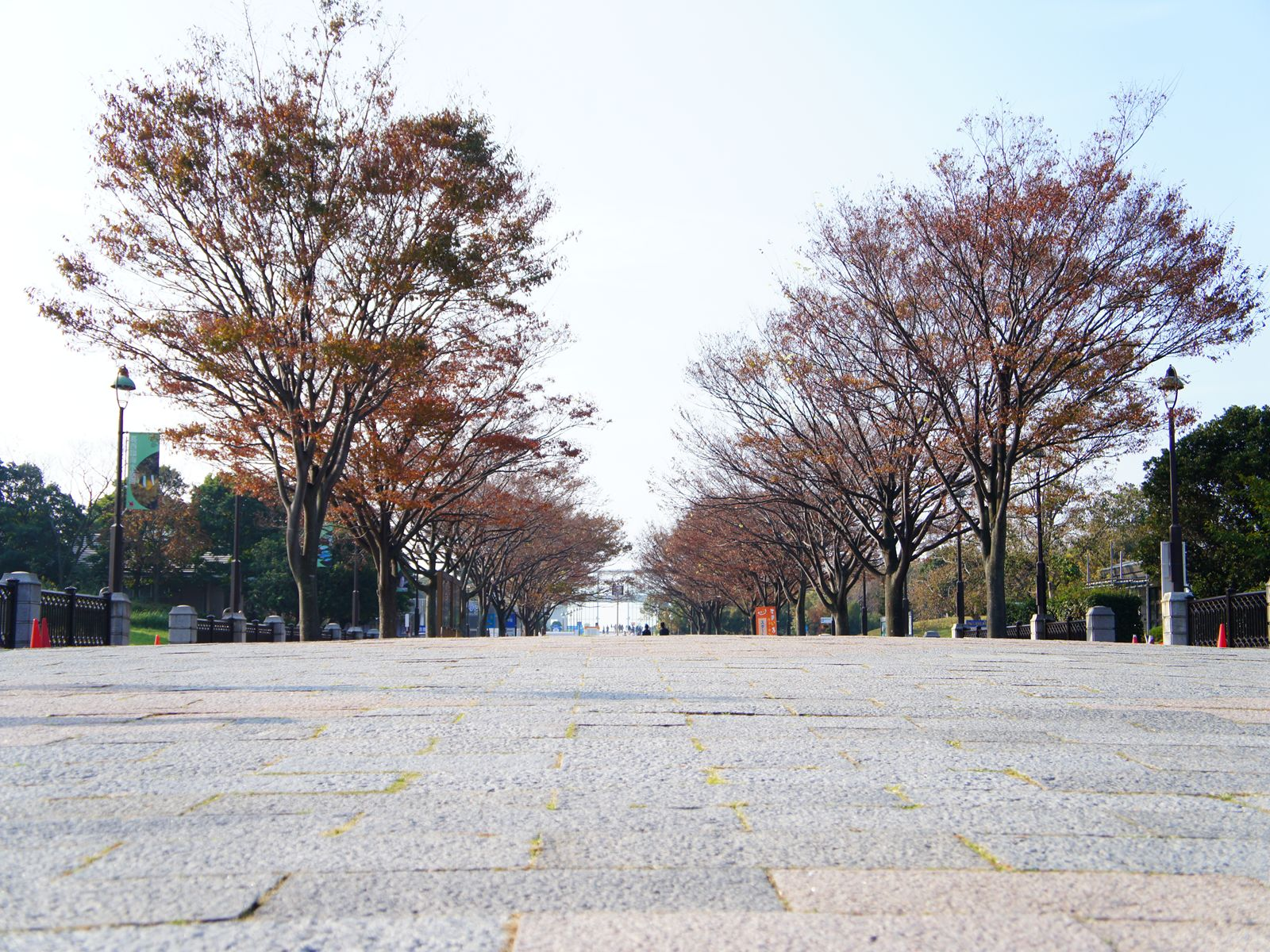 20111113_01