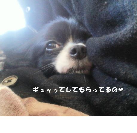 83498123う0ぽ