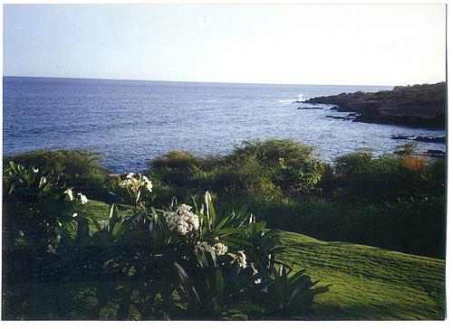 lanai hotel view