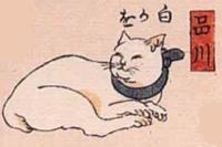 02★品川(しながわ)→白かを(シロ猫の顔)