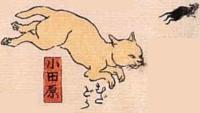 10★小田原(おだわら)→むだどら(ネズミに無駄に走らされたドラ)