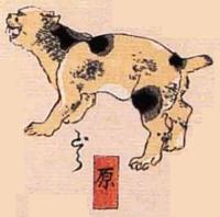 14★原(はら)→どら(ドラ猫)