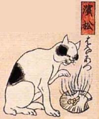 30★浜松(はままつ)→はなあつ(鼻が熱い)
