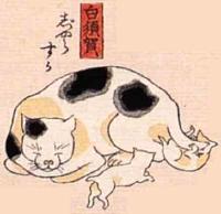33★白須賀(しらすか)→じゃらすか(子猫をじゃらそう)