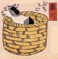 38★藤川(ふじかわ)→ぶちかご(ブチ猫と籠)