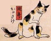 39★岡崎(おかざき)→おがさけ(尾が裂けると猫又に変化)