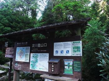 屋久島 141