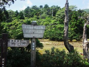 屋久島 019