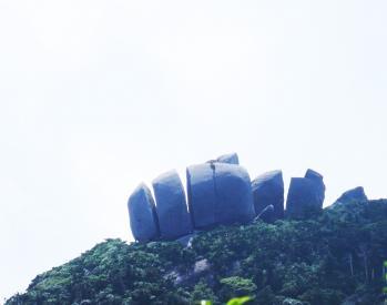 屋久島 016