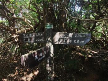 屋久島 030