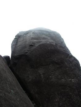 屋久島 234