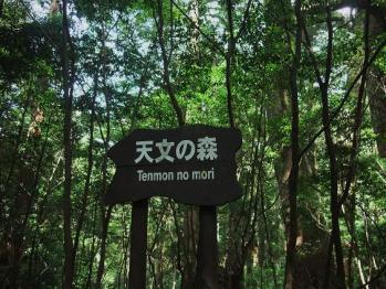 屋久島 199