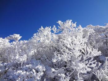 雪の韓国 043