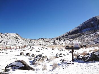 雪の韓国 005
