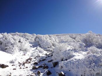 雪の韓国 070