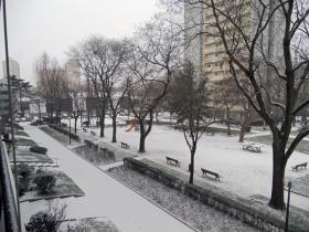 neige2.jpg