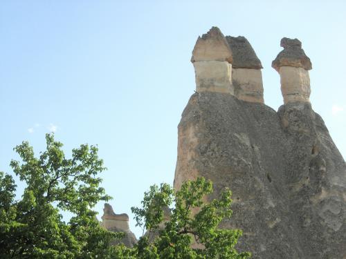 キノコの山