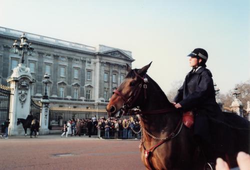 宮殿前の騎馬警官