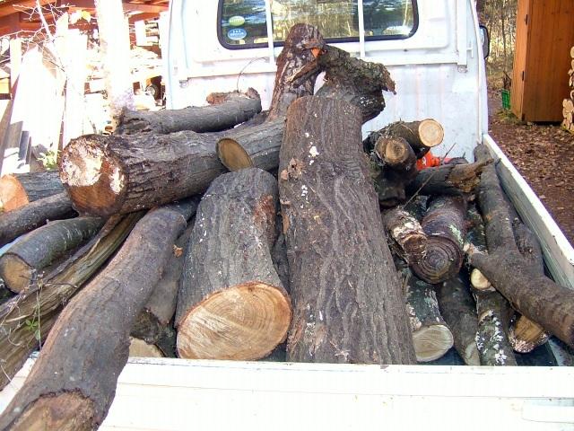 荷台の倒木