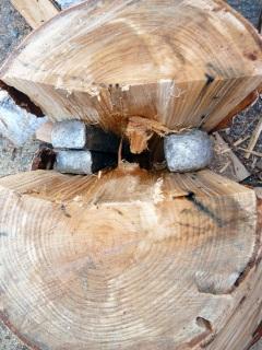 木の中のクサビ