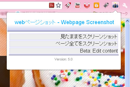 WebpageScreenshot5