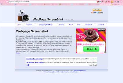 WebpageScreenshot3