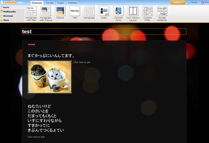 WebsiteBuilder11