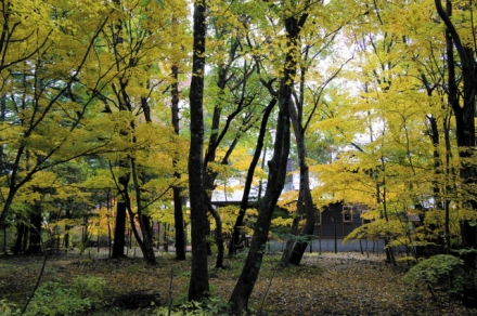 karuizawa 14