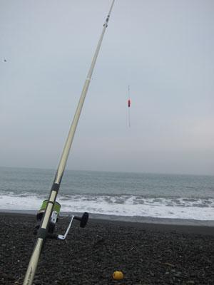 1007釣り