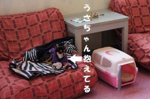 縺昴s縺ァ繝壹さ縺ッ_convert_20110322171515