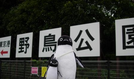 東京港野鳥公園1
