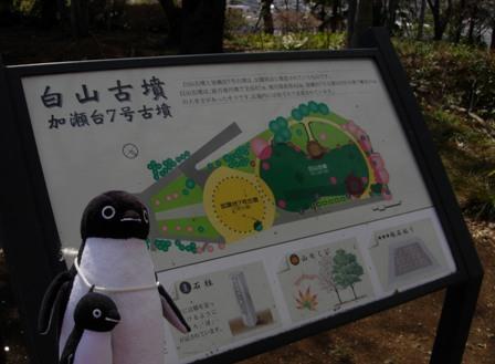 夢見が崎動物公園5
