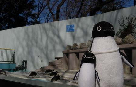 夢見が崎動物公園10