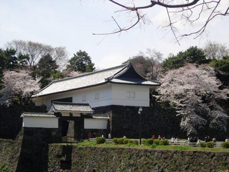東京の春3