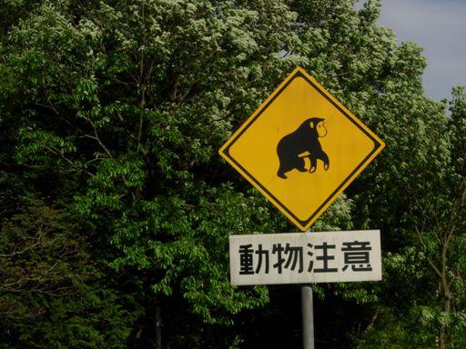 道路標識サル