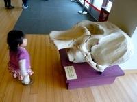 Brooklyn Children Museum4