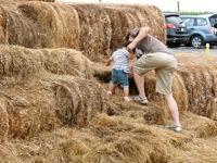 Alstede Farm7