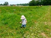 Alstede Farm14