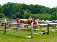 Alstede Farm2