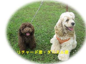 2010-07-04_2277リチャード君